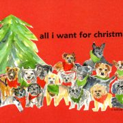 cs.39 christmas 2015 POMDR adoptable dogs